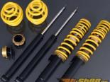 Eisenmann Sport Chassis Shock Absorbers With Springs Audi R8 4.2L 08-15