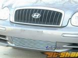 Решётка на передний бампер - на Hyundai Sonata 2002-2006