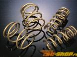 TEIN High.Tech Coil Springs Mazda Protege