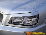 Liberal Fiberglass Eyelines Subaru Forester